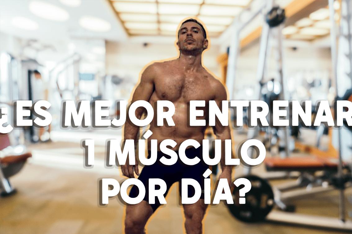 ¿Se debe entrenar 1 grupo muscular por día?