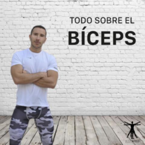 Bíceps fuertes y grandes