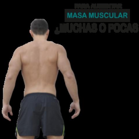 Masa muscular: ¿muchas o pocas repeticiones?