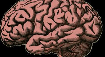 Deporte y cerebro: una relación indisoluble.